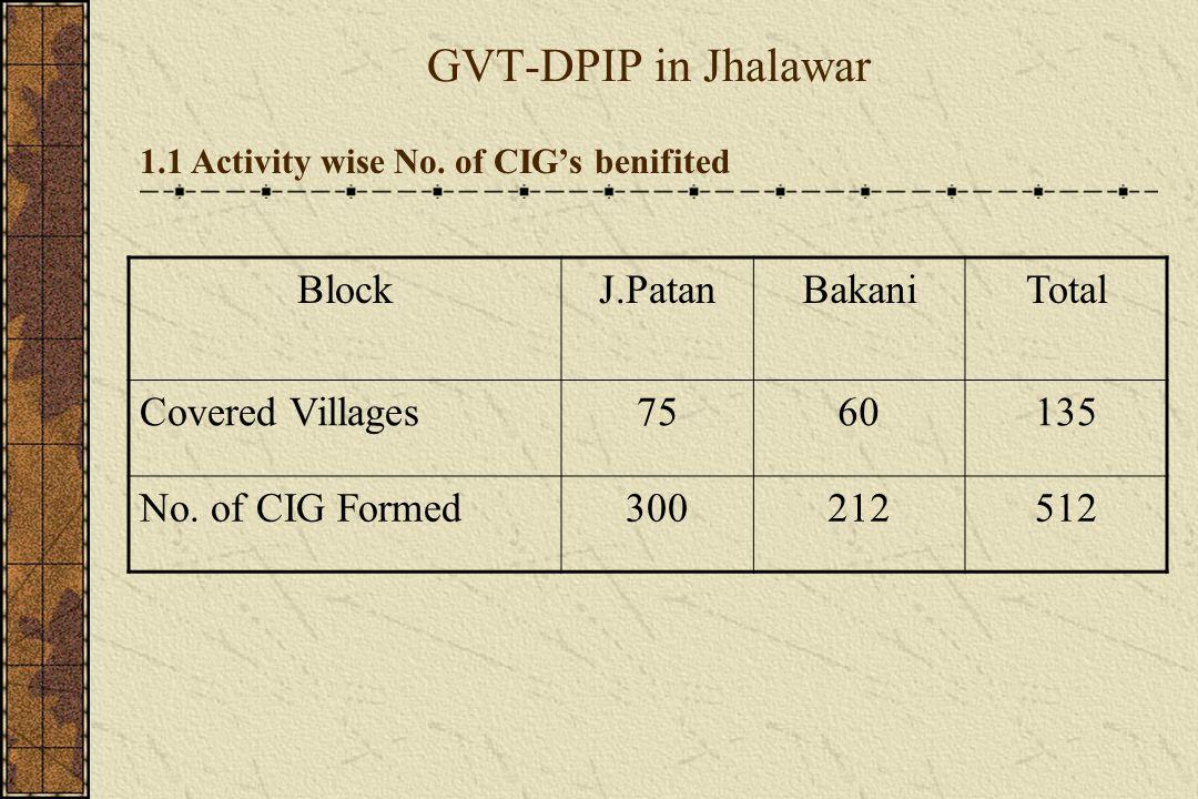 GVT-DPIP in Jhalawar 1.2 Category S.No.Block Totl J.PatanBakani 2Total Member30342173 5207 3Total Female Member16771146 2823 4Total Male Member13571027 2384 5Total BPL No.25331898 4431 6Total APL No.448222 670 7No.