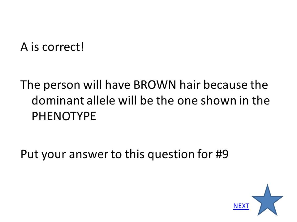 A is correct! The person will have BROWN hair because the dominant allele will be the one shown in the PHENOTYPE Put your answer to this question for
