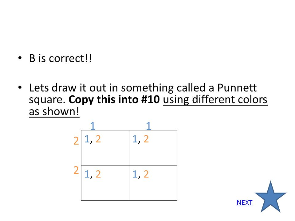 B is correct!! Lets draw it out in something called a Punnett square. Copy this into #10 using different colors as shown! 1 1 2 1, 2 NEXT