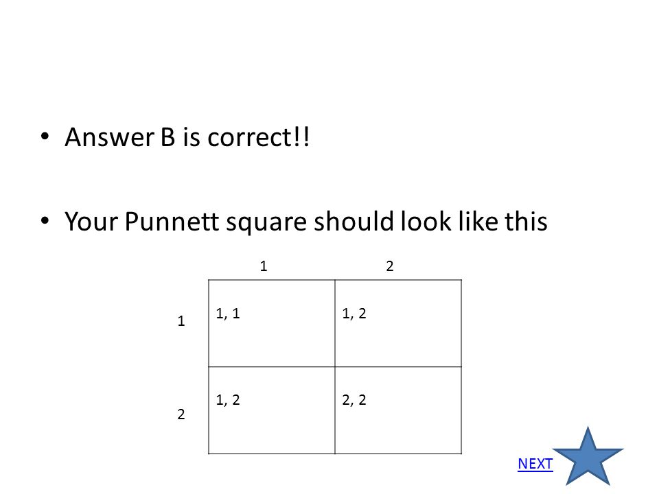 Answer B is correct!! Your Punnett square should look like this 1, 11, 2 2, 2 12 1 2 NEXT