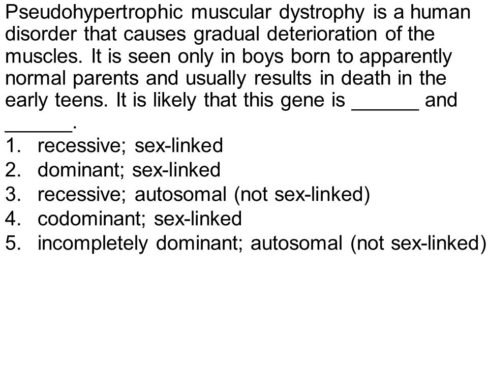 Pseudohypertrophic muscular dystrophy is a human disorder that causes gradual deterioration of the muscles.