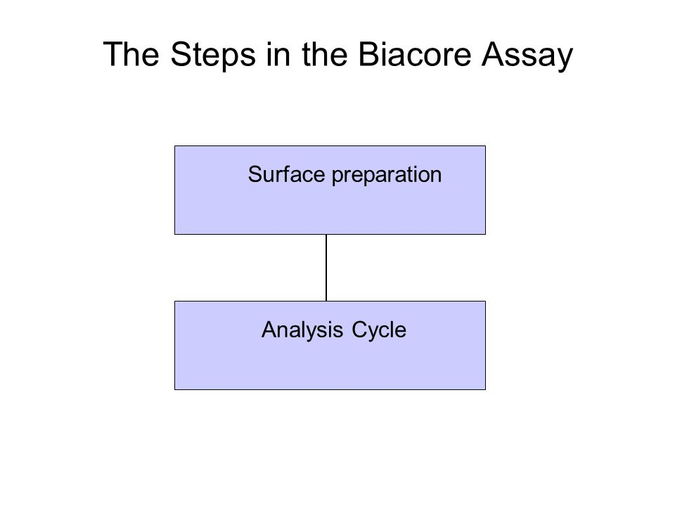 Surface preparation Analysis Cycle The Steps in the Biacore Assay