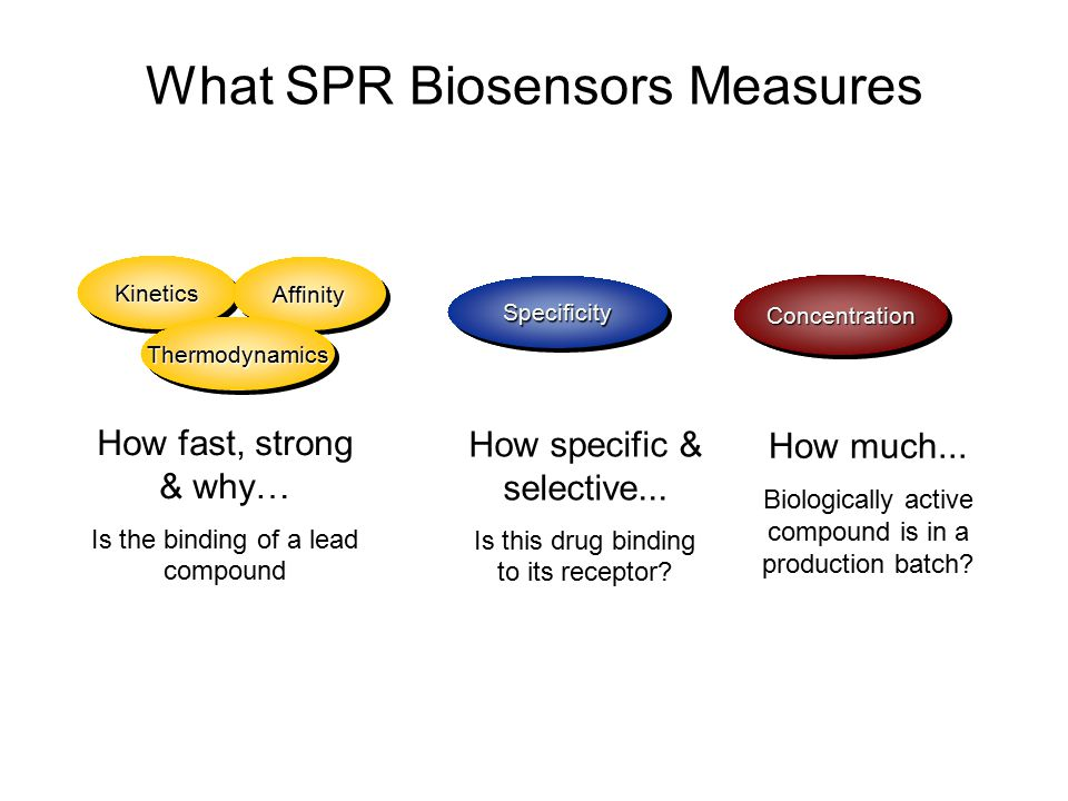 What SPR Biosensors Measures How specific & selective... Is this drug binding to its receptor? How much... Biologically active compound is in a produc