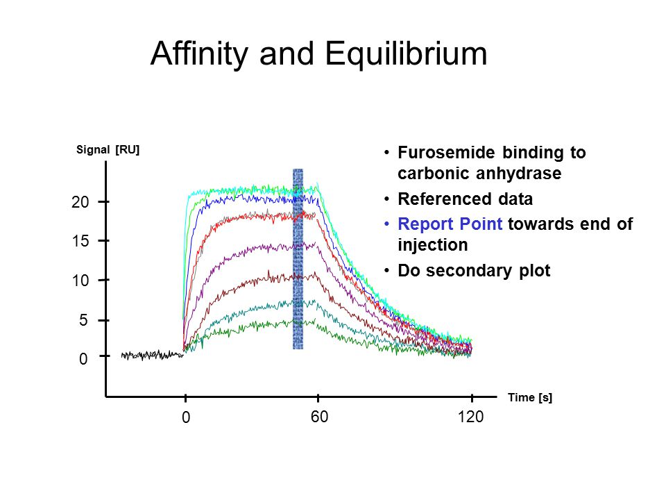 Affinity and Equilibrium Furosemide binding to carbonic anhydrase Referenced data Report Point towards end of injection Do secondary plot 0 5 10 15 20