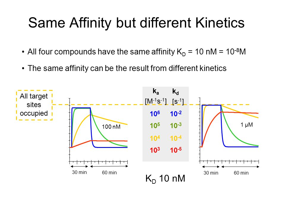 Same Affinity but different Kinetics All four compounds have the same affinity K D = 10 nM = 10 -8 M The same affinity can be the result from differen