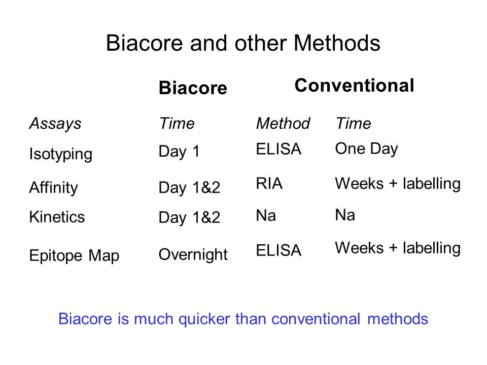 Biacore and other Methods Biacore Assays Isotyping Affinity Kinetics Epitope Map Time Conventional MethodTime Day 1 Day 1&2 Overnight ELISA One Day RI