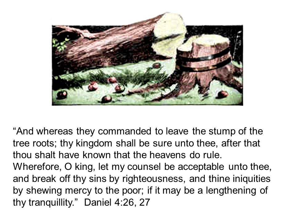 """And whereas they commanded to leave the stump of the tree roots; thy kingdom shall be sure unto thee, after that thou shalt have known that the heave"
