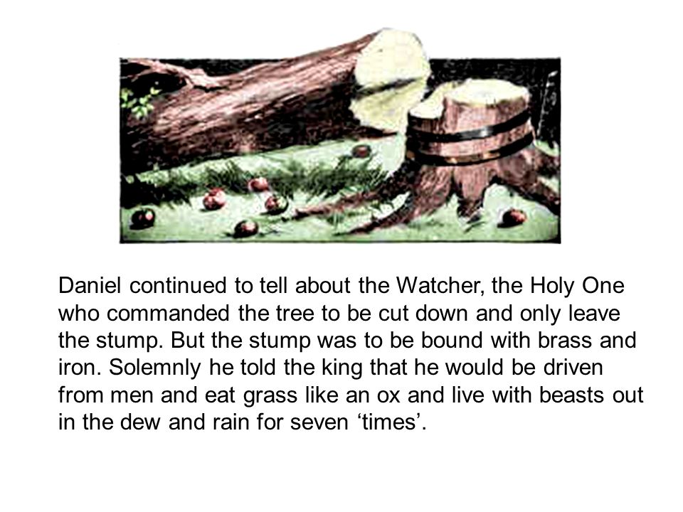 Daniel continued to tell about the Watcher, the Holy One who commanded the tree to be cut down and only leave the stump. But the stump was to be bound