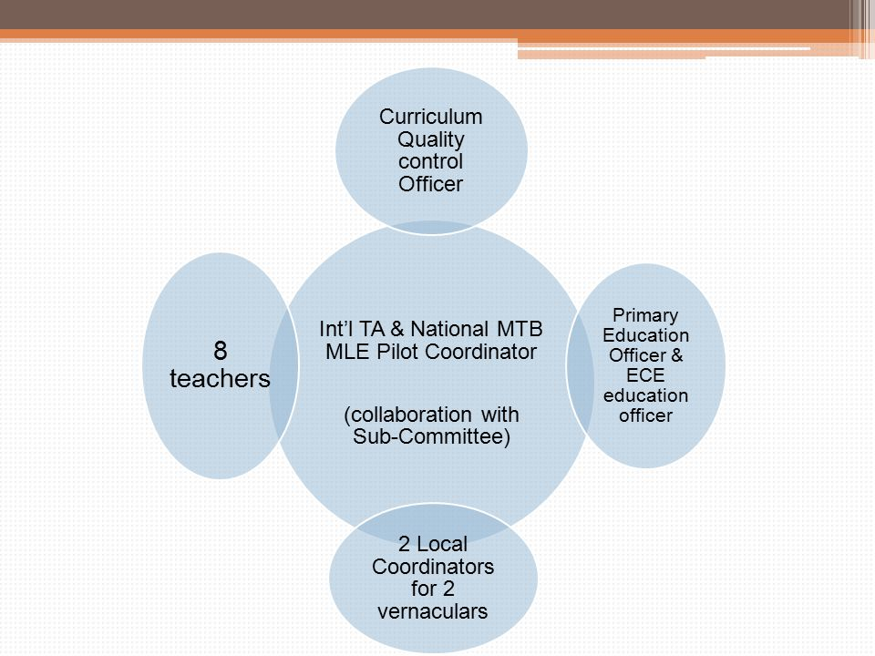 Int'l TA & National MTB MLE Pilot Coordinator (collaboration with Sub-Committee) Curriculum Quality control Officer Primary Education Officer & ECE education officer 2 Local Coordinators for 2 vernaculars 8 teachers