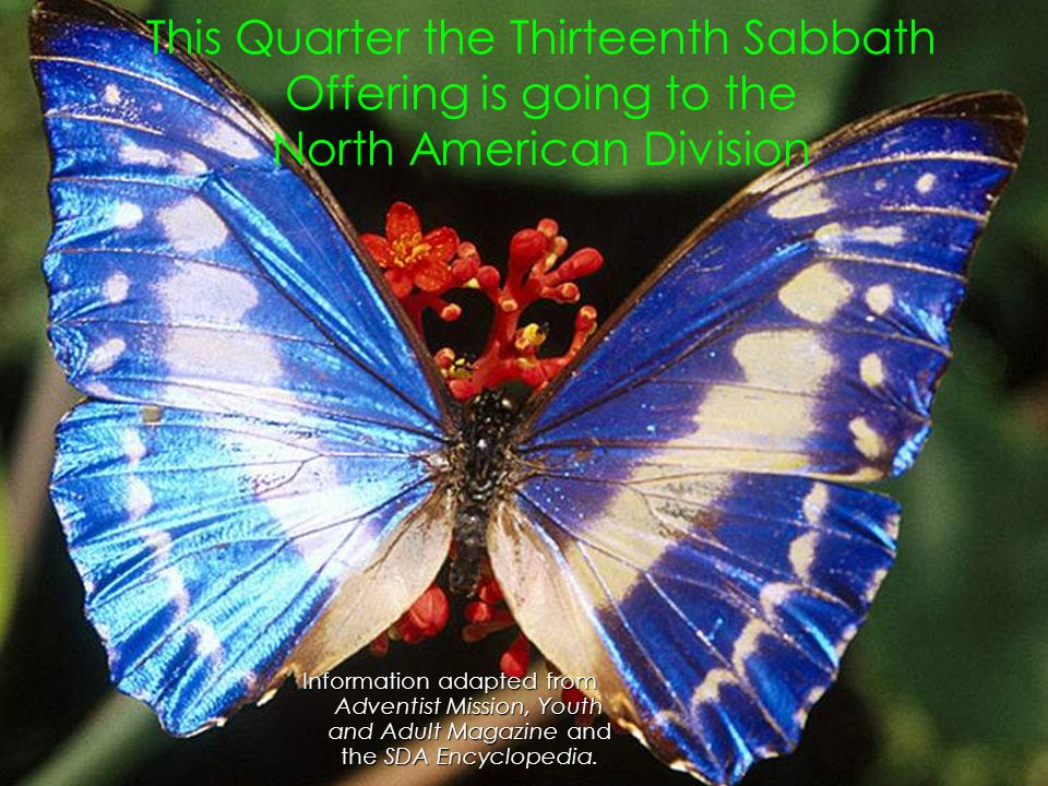 This Quarter the Thirteenth Sabbath Offering is going to the North American Division Information adapted from Adventist Mission, Youth and Adult Magaz