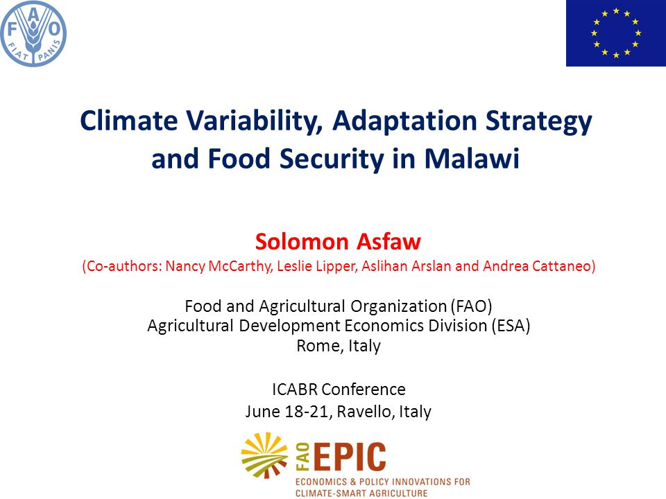 Solomon Asfaw (Co-authors: Nancy McCarthy, Leslie Lipper, Aslihan Arslan and Andrea Cattaneo) Food and Agricultural Organization (FAO) Agricultural Development Economics Division (ESA) Rome, Italy ICABR Conference June 18-21, Ravello, Italy Climate Variability, Adaptation Strategy and Food Security in Malawi