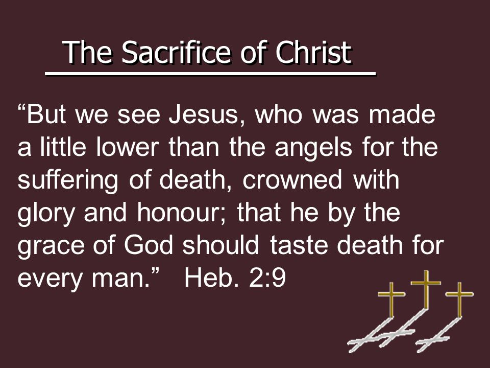 The Sacrifice of Christ But we see Jesus, who was made a little lower than the angels for the suffering of death, crowned with glory and honour; that he by the grace of God should taste death for every man. Heb.