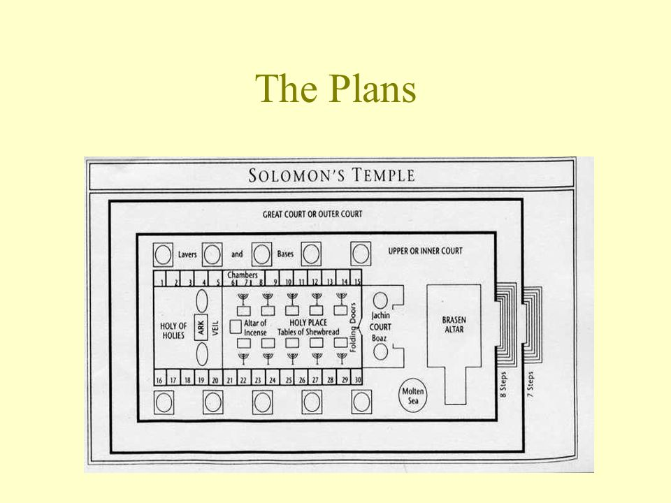 The Plans