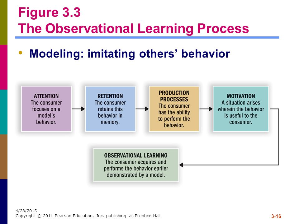 3-16 4/28/2015 Copyright © 2011 Pearson Education, Inc. publishing as Prentice Hall Figure 3.3 The Observational Learning Process Modeling: imitating