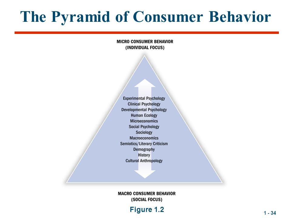 1 - 34 The Pyramid of Consumer Behavior Figure 1.2