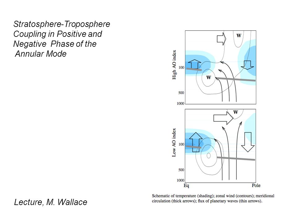Stratosphere-Troposphere Coupling in Positive and Negative Phase of the Annular Mode Lecture, M.