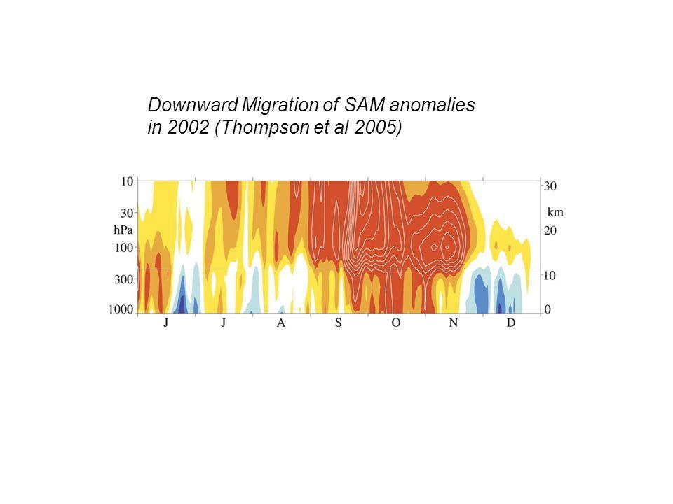 Downward Migration of SAM anomalies in 2002 (Thompson et al 2005)