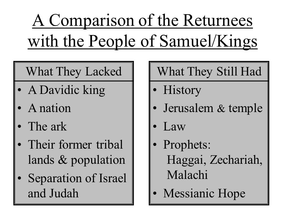Possible Concerns of Returnees 1.Did the Davidic promise fail.