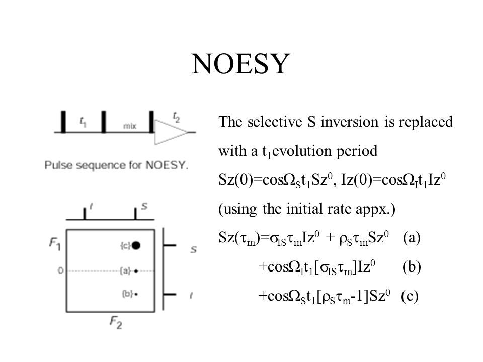 NOESY The selective S inversion is replaced with a t 1 evolution period Sz(0)=cos  S t 1 Sz 0, Iz(0)=cos  I t 1 Iz 0 (using the initial rate appx.) Sz(  m  =  IS  m Iz 0 +  S  m Sz 0 (a) +cos  I t 1 [  IS  m ]Iz 0 (b) +cos  S t 1 [  S  m -1]Sz 0 (c)