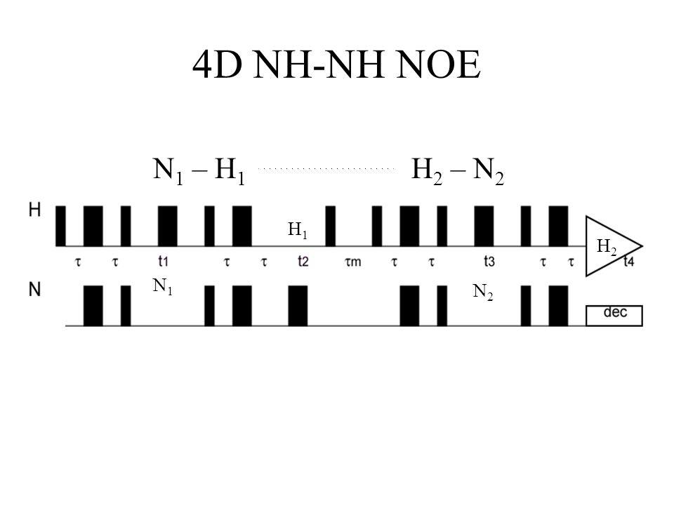 4D NH-NH NOE N 1 – H 1 H 2 – N 2 N1N1 H1H1 N2N2 H2H2
