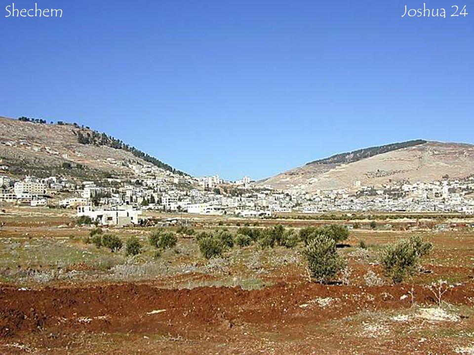 ShechemJoshua 24