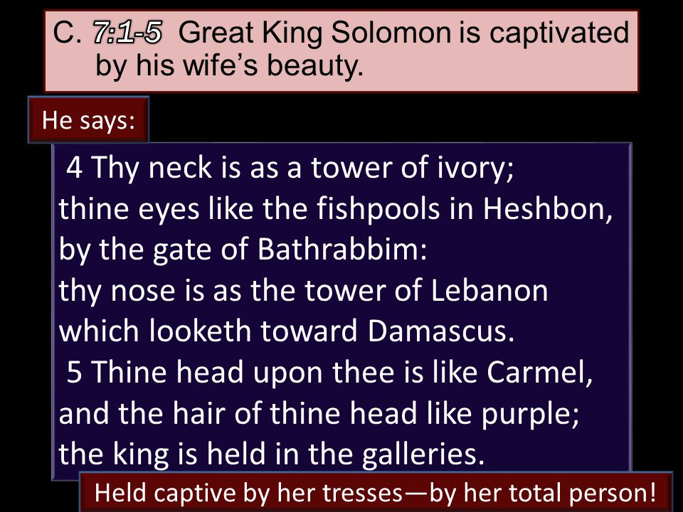 25 4 Thy neck is as a tower of ivory; thine eyes like the fishpools in Heshbon, by the gate of Bathrabbim: thy nose is as the tower of Lebanon which looketh toward Damascus.