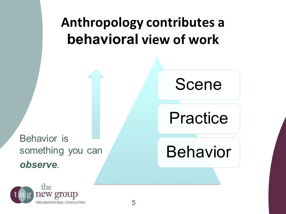 Anthropology contributes a behavioral view of work ScenePracticeBehavior Behavior is something you can observe.