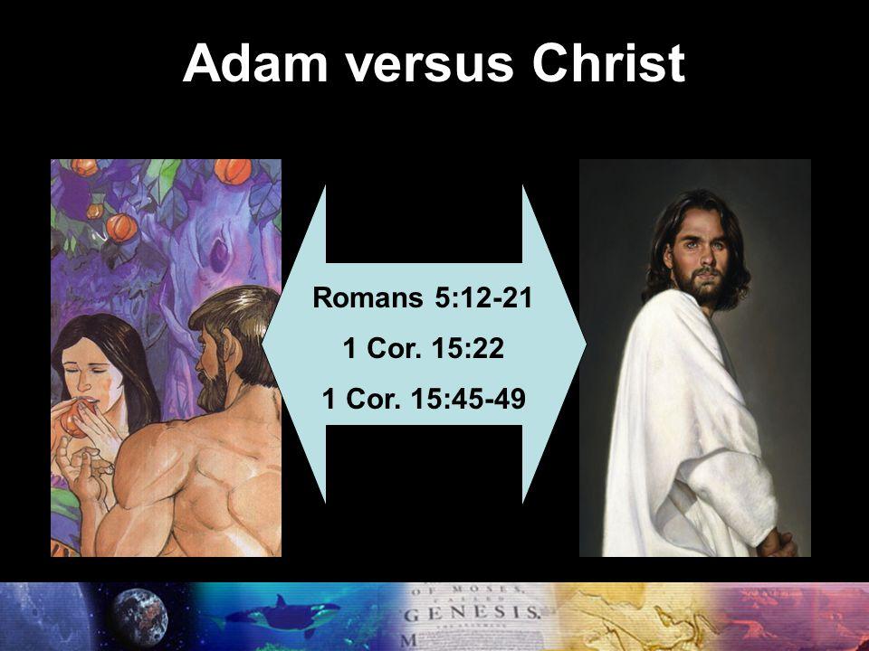 Adam versus Christ Romans 5:12-21 1 Cor. 15:22 1 Cor. 15:45-49