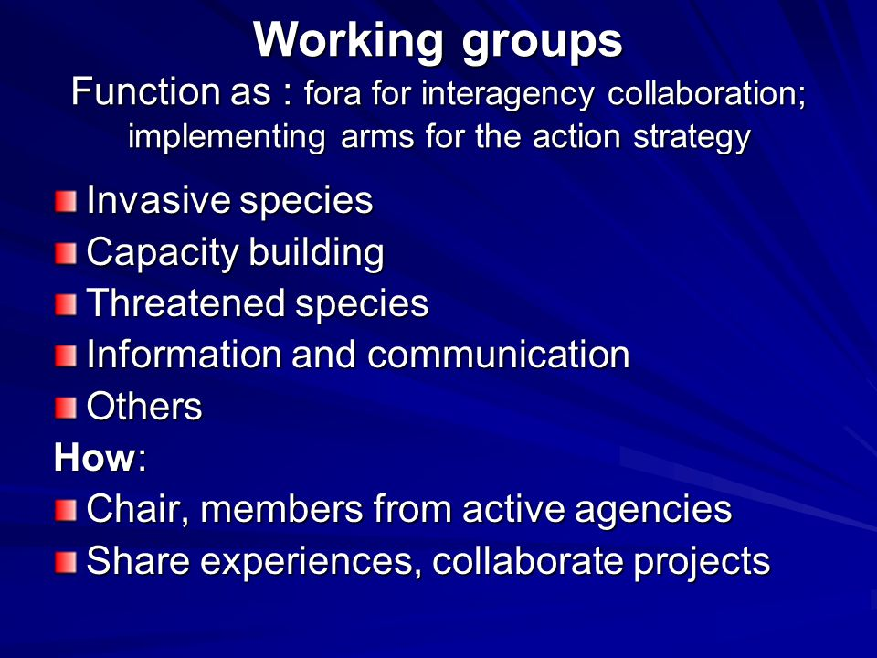 Working groups Function as : fora for interagency collaboration; implementing arms for the action strategy Invasive species Capacity building Threatened species Information and communication Others How: Chair, members from active agencies Share experiences, collaborate projects