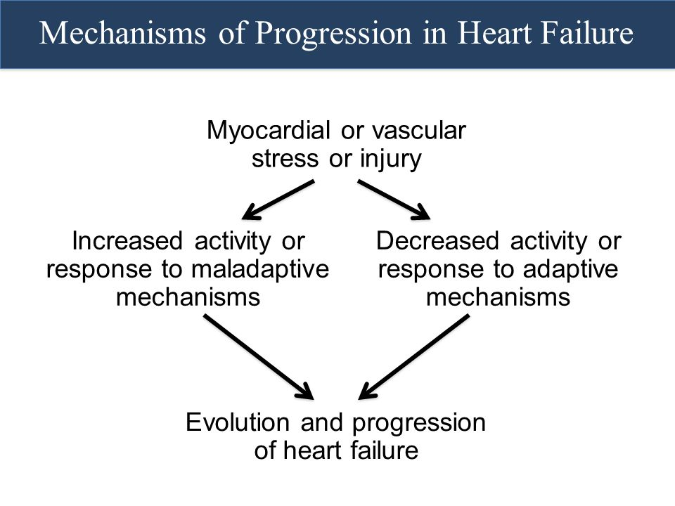 Myocardial or vascular stress or injury Evolution and progression of heart failure Mechanisms of Progression in Heart Failure Increased activity or re