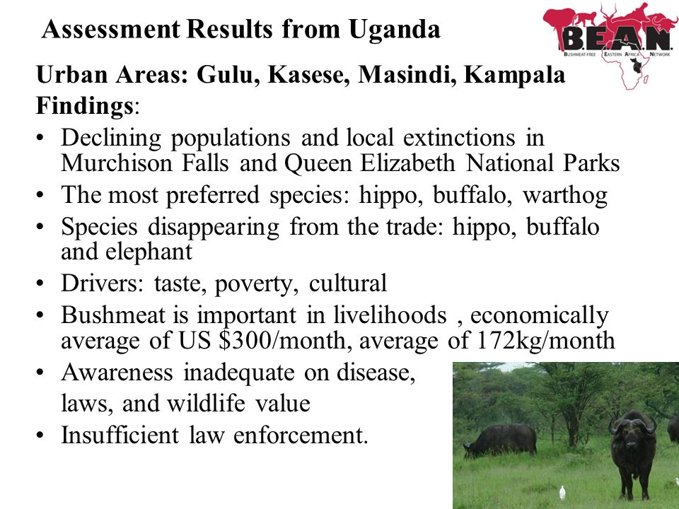 Assessment Results from Uganda Urban Areas: Gulu, Kasese, Masindi, Kampala Findings: Declining populations and local extinctions in Murchison Falls an