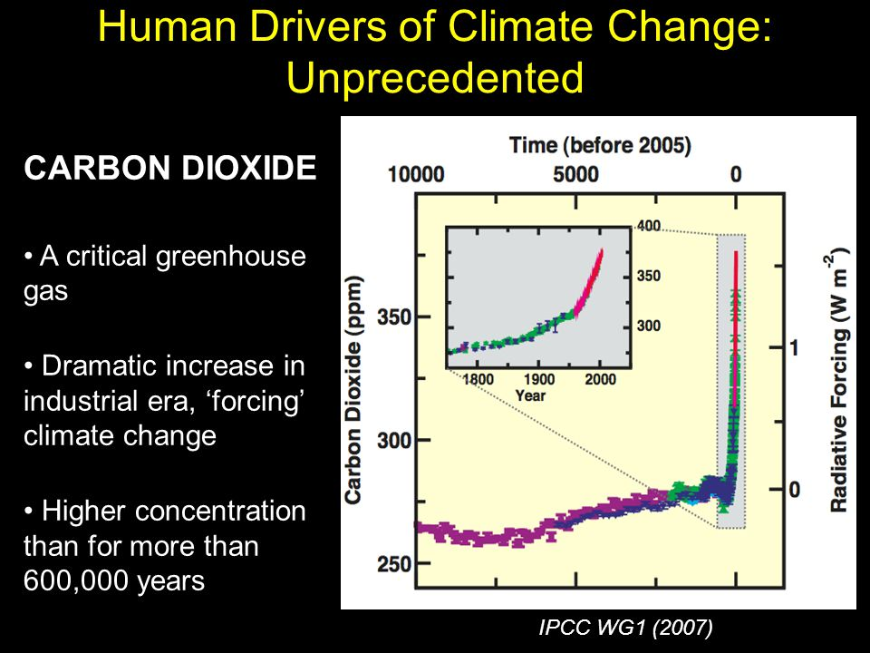 CARBON DIOXIDE A critical greenhouse gas Dramatic increase in industrial era, 'forcing' climate change Higher concentration than for more than 600,000 years Human Drivers of Climate Change: Unprecedented IPCC WG1 (2007)