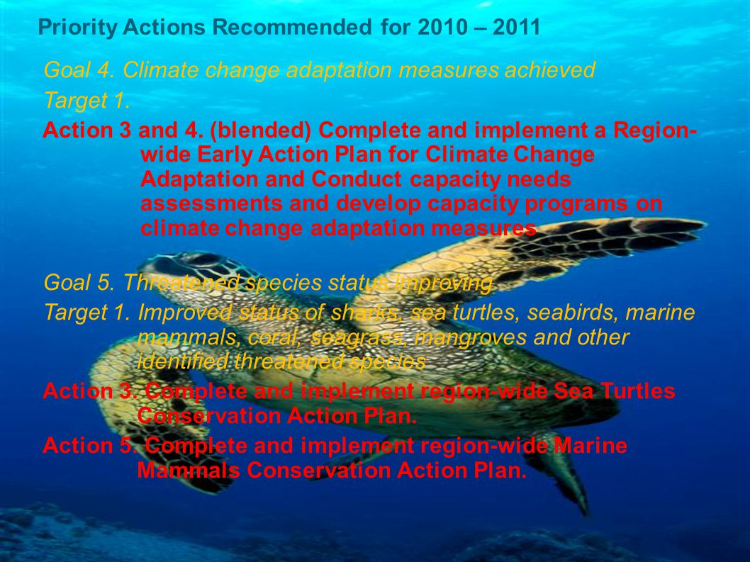Priority Actions Recommended for 2010 – 2011 Goal 4.