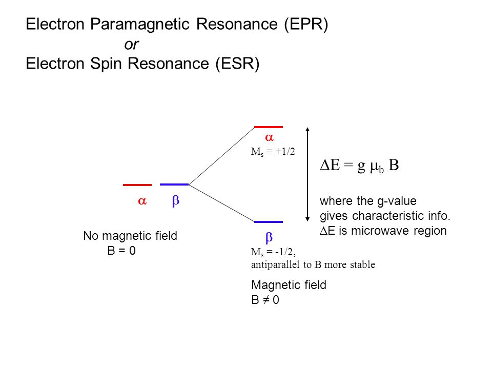 Electron Paramagnetic Resonance (EPR) or Electron Spin Resonance (ESR)    M s = -1/2, antiparallel to B more stable  M s = +1/2  E = g  b B where the g-value gives characteristic info.