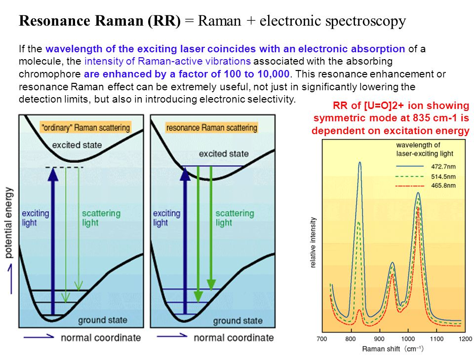 Resonance Raman (RR) = Raman + electronic spectroscopy If the wavelength of the exciting laser coincides with an electronic absorption of a molecule, the intensity of Raman-active vibrations associated with the absorbing chromophore are enhanced by a factor of 100 to 10,000.