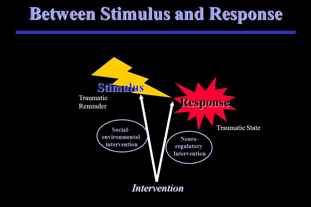 Between Stimulus and Response Response Stimulus