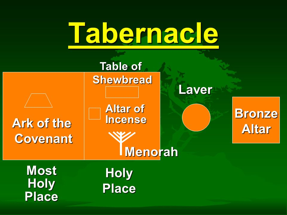 Tabernacle MostHolyPlace HolyPlace Laver Altar Courtyard