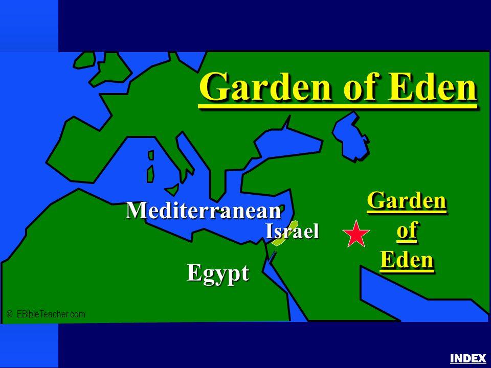 Noah's Ark 1 INDEX © EBibleTeacher.com Mediterranean Egypt MountArarat(Turkey) Noah's Ark Israel(Future)