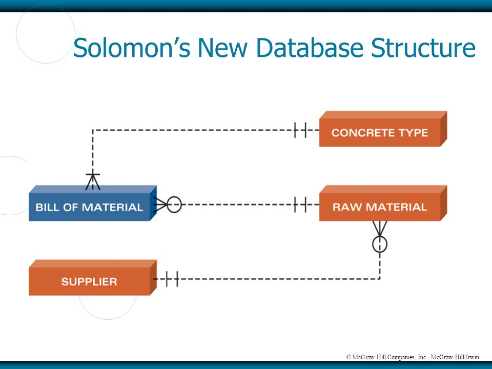 © McGraw-Hill Companies, Inc., McGraw-Hill/Irwin Solomon's New Database Structure