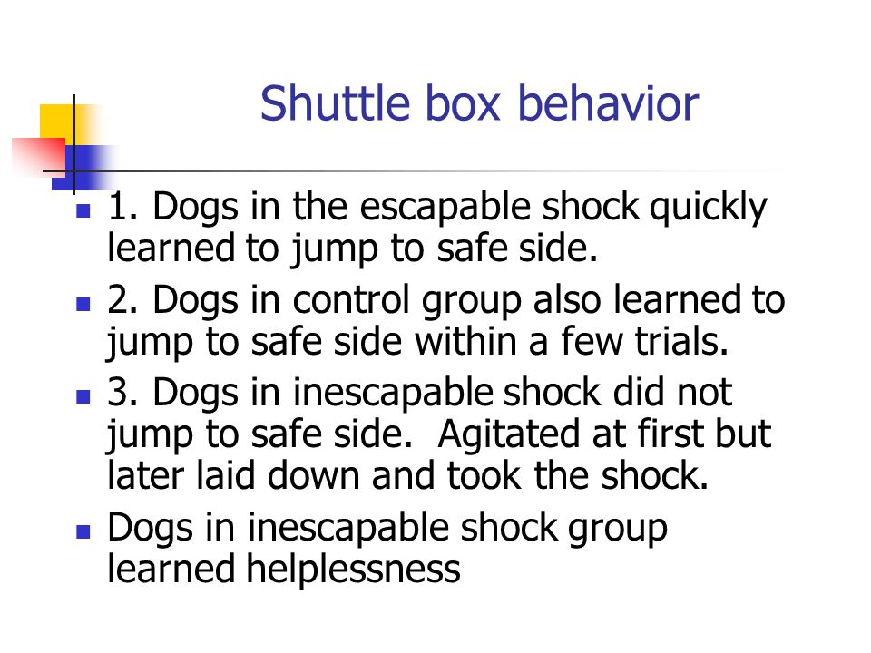 Shuttle box behavior 1. Dogs in the escapable shock quickly learned to jump to safe side.
