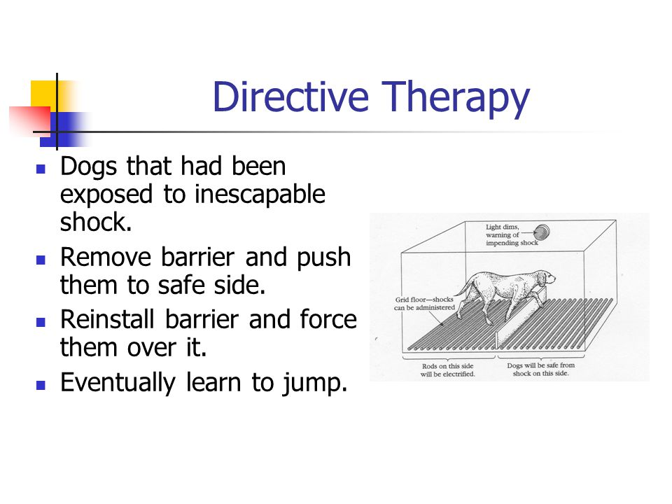 Directive Therapy Dogs that had been exposed to inescapable shock. Remove barrier and push them to safe side. Reinstall barrier and force them over it