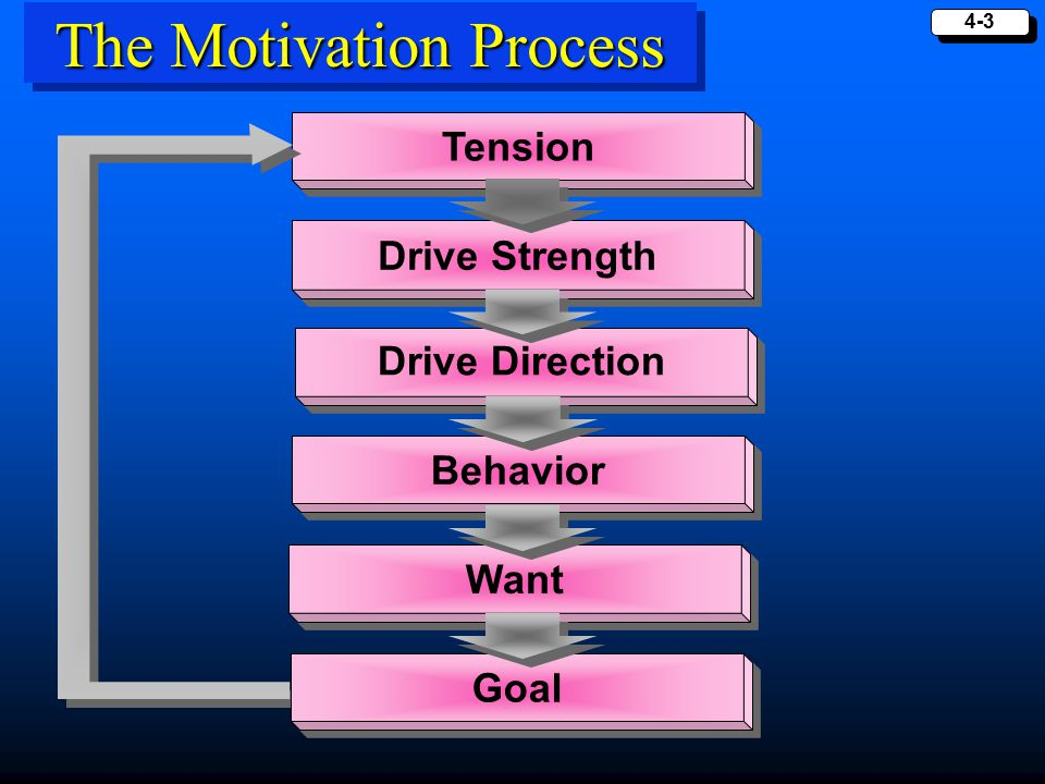 4-4 Motivational Strength The Degree to Which a Person is Willing to Expend Energy to Reach One Goal as Opposed to Another.