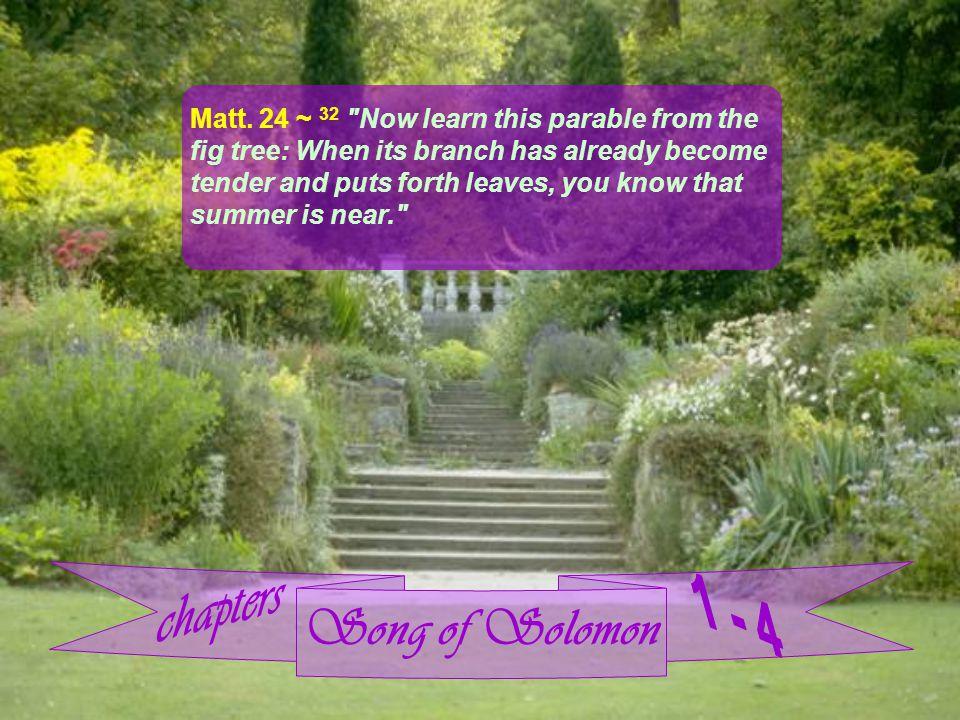 Song of Solomon Matt.