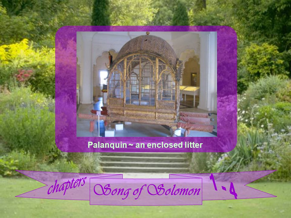 Song of Solomon Palanquin ~ an enclosed litter
