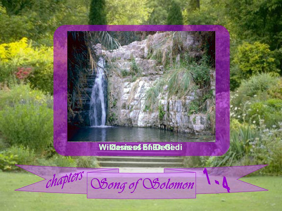 Song of Solomon Wilderness of En Gedi Oasis of En Gedi