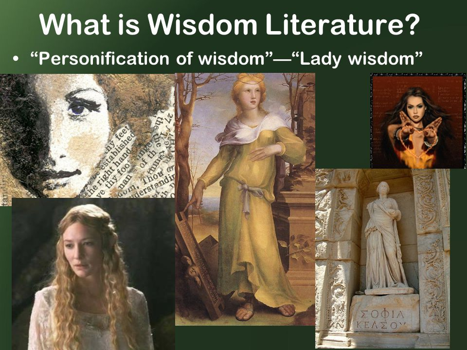What is Wisdom Literature Personification of wisdom — Lady wisdom