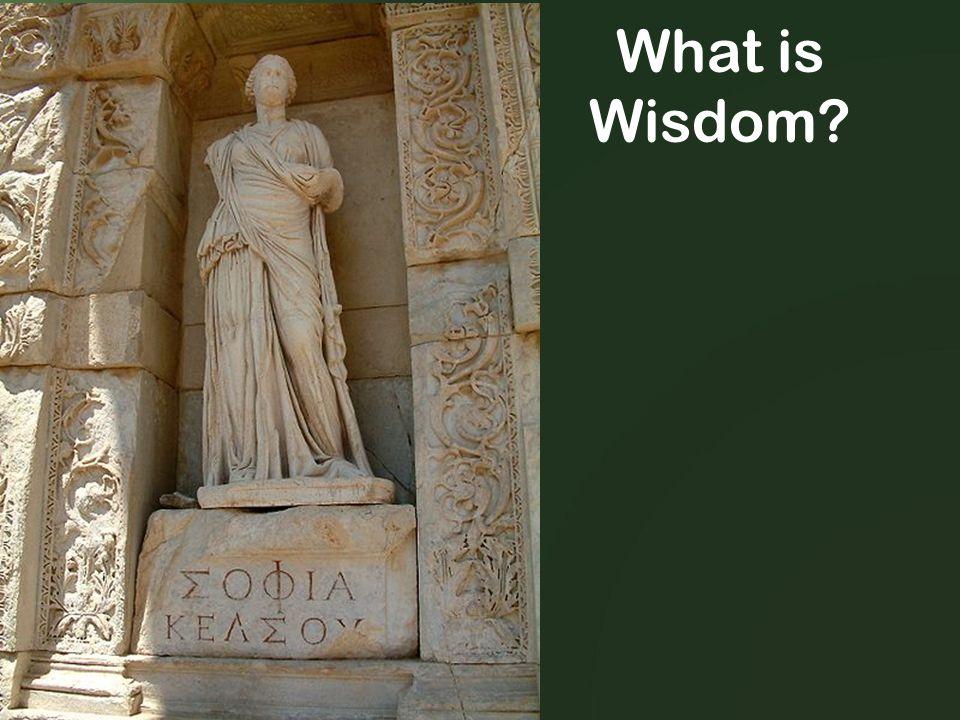 What is Wisdom