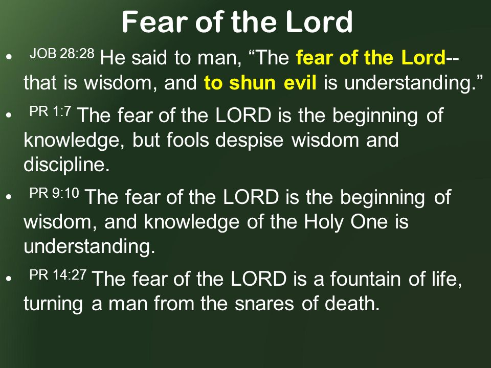 Fear of the Lord JOB 28:28 He said to man, The fear of the Lord-- that is wisdom, and to shun evil is understanding. PR 1:7 The fear of the LORD is the beginning of knowledge, but fools despise wisdom and discipline.
