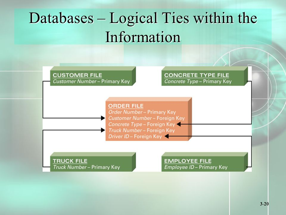3-20 Databases – Logical Ties within the Information