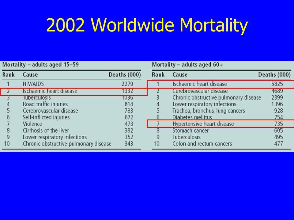 2002 Worldwide Mortality